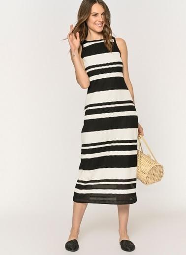 Loves You Siyah-Beyaz Çizgili Elbise Siyah